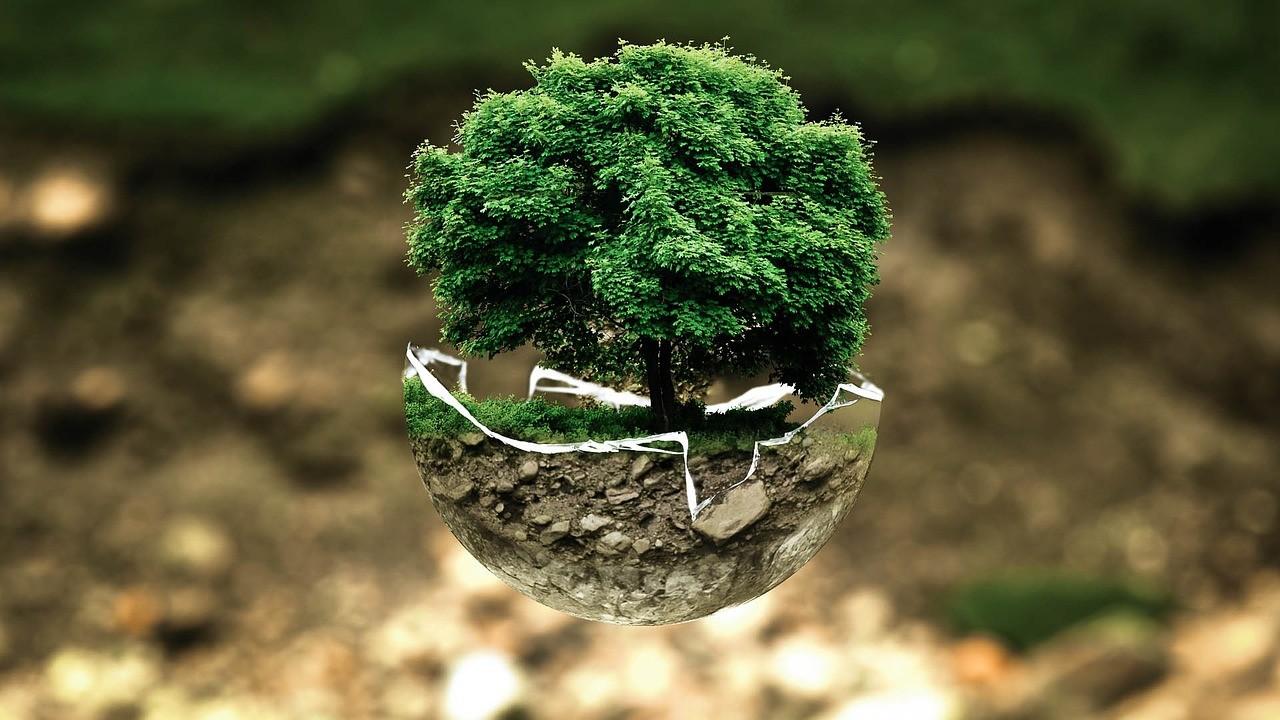 aervio viajes empresa sostenibles