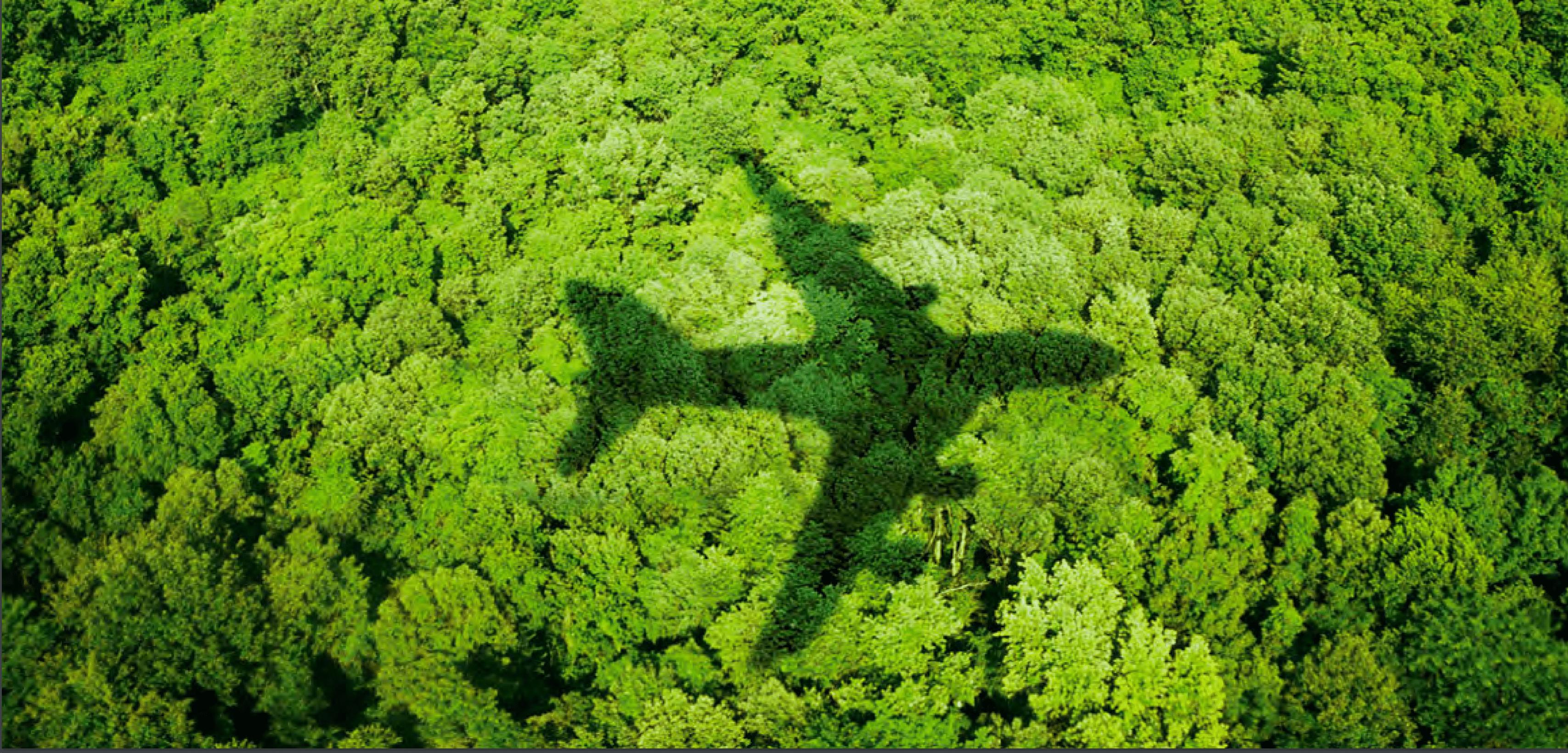 Viajes corporativos sostenibles