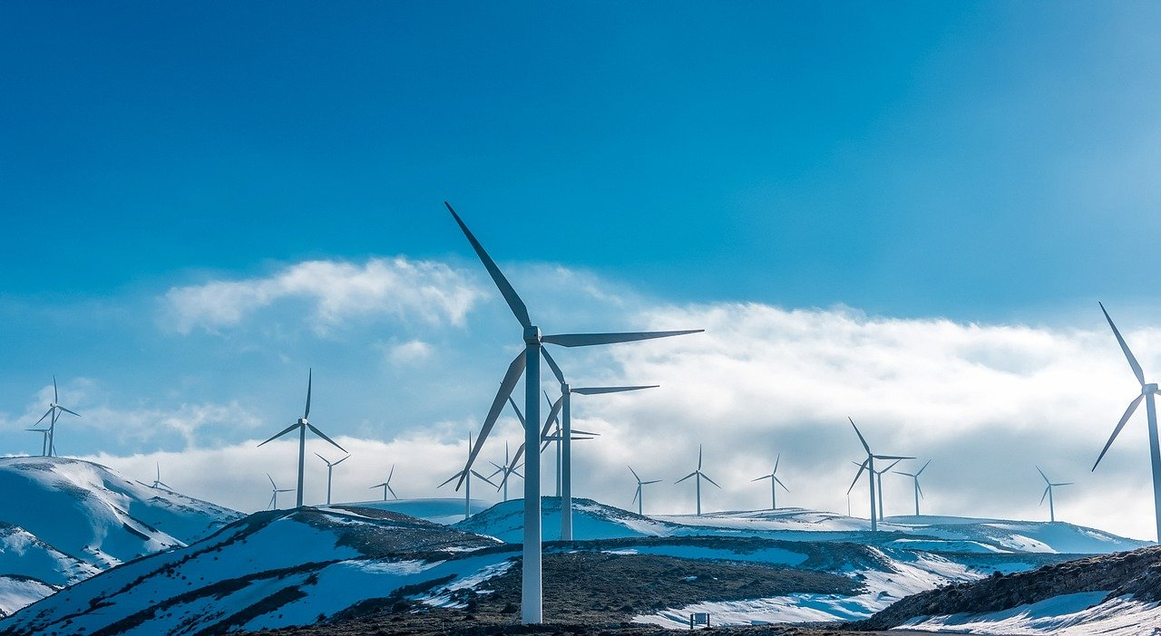 Acciones para reducir la huella de carbono